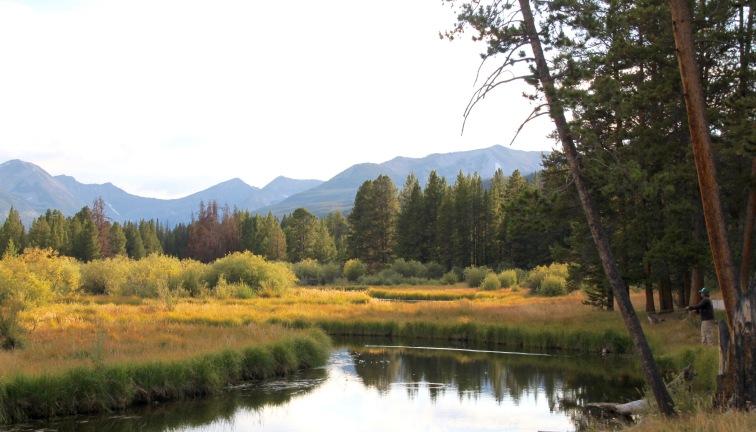 Fishing Minor Creek, Big Hole Valley, Montana