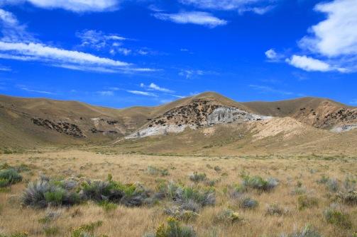 montana-sage-and-grasslands