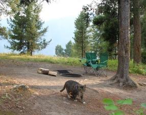 Scrappers Camping in Hebgan Lake, Montnana